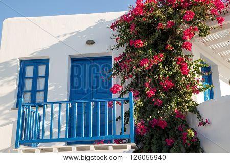 Blue Greek Door
