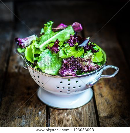 Fresh Green Salad With Spinach On Rustic Background