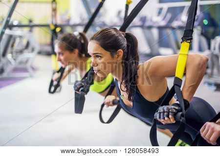 Women training arms with trx fitness straps in the gym doing push ups train upper body chest shoulders pecs triceps poster