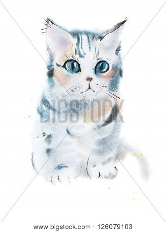 hand drawn watercolor painting of cute gray curious staring kitten, sitting pussycat aquarelle drawing
