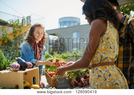 Female gardener selling organic crops and picking up a bountiful basket full of fresh produce