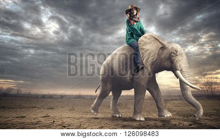 The beautiful woman rides elephant in desert