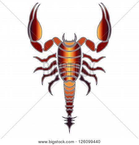 Bright colorful scorpion zodiac Scorpio sign for astrological predestination and horoscope