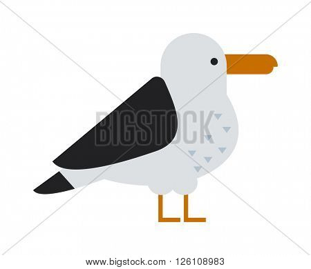 Great black-backed gull larus marinus sea wildlife animal and beautiful bird flat vector.