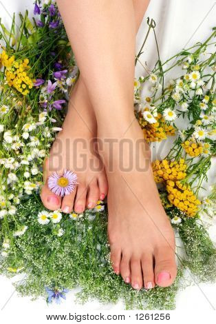beautiful woman legs among flowers over white background poster