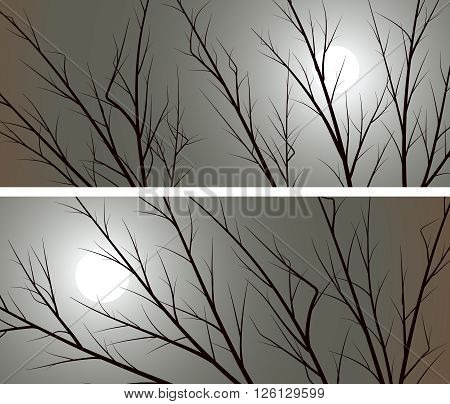 Set of horizontal abstract wide banners branches of trees against the moon.