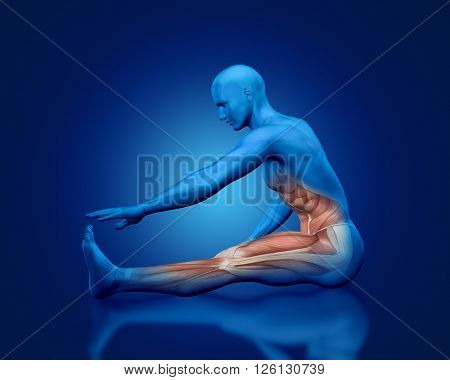 3D blue male medical figure with partial muscle map in stretching pose