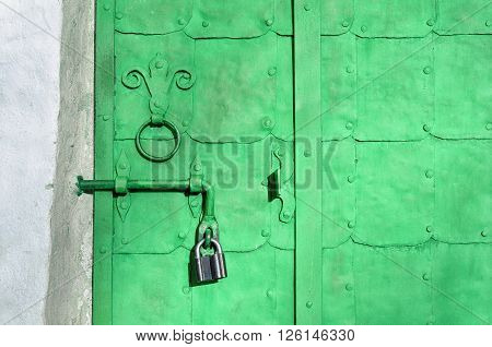 Steel bright green door with rivets plates and worn metal door handle in the form of stylized lily. Architectural metal background with decorative elements.