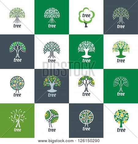 Tree logo template. Abstract vector illustration. Plant