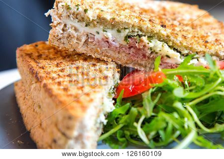 Closeup macro croque monsieur hot grilled sandwich with ham, cheese, fresh tomatoes and green rucola