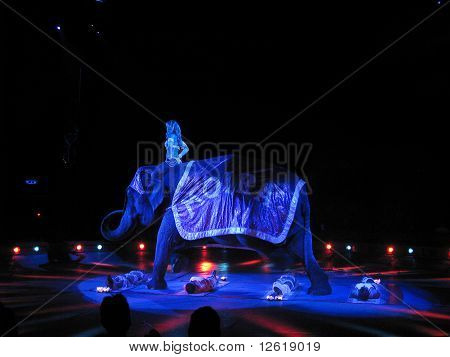 Moira Orfei  Circus