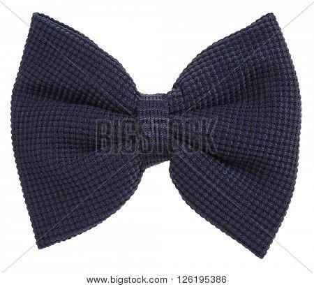 Dark blue knitted hair bow tie