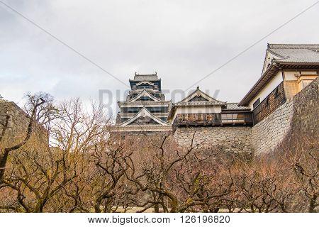 Beautiful vintage kumamoto castle in kumamoto city kyushu japan.