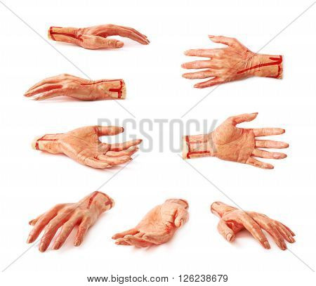 Fake rubber severed hand as a Halloween prank toy, isolated over the white background, set of multiple different foreshortenings