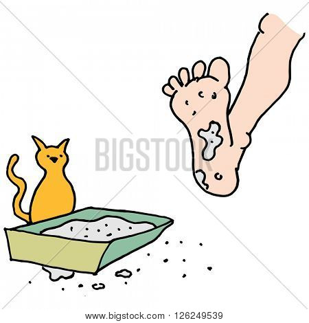 An image of a Man stepping in dirty kitty litter box.