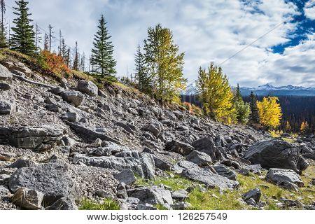 Stony coast of the shoaled Medicine Lake. Fall to Jasper national park, Canada