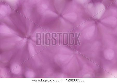 Abstract Blurred Flower Shape Soft Pastel Pink Violet Blossom Spring Background