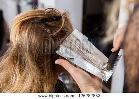 Hairdresser Applying Dye On Customer's Hair In Salon