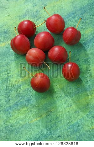 Red mirabelle plum fruits over painted textile background. Overhead view.