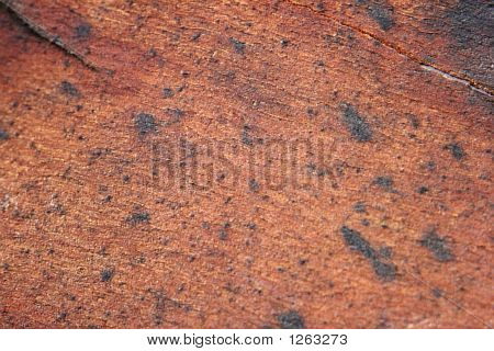 nice texture pice of wood and ideal background poster