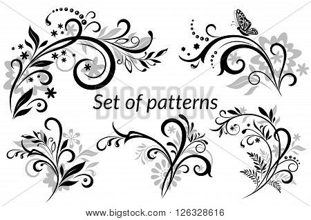 Set of Vintage Calligraphic Elements, Floral Patterns and Butterfly, Black and Grey Silhouettes Isolated on White Background. Vector