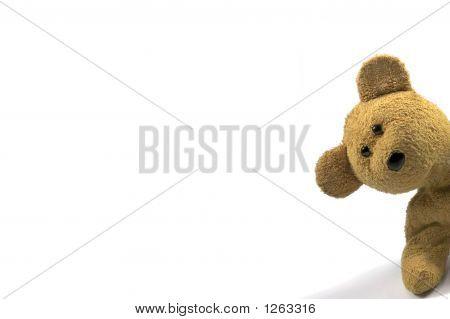 Teddy leerlo