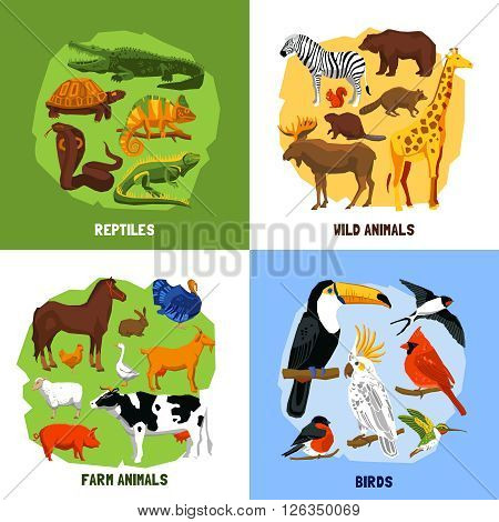 Cartoon 2x2 zoo images of animals sets grouped by reptiles birds wild and farm animals vector illustration poster