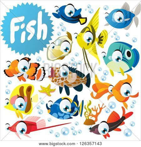 Big vector collection of tropical exotic fish. Set of more than twelve aquarium fish. Pet set for mobile games, logo or banner design, wall stickers etc.