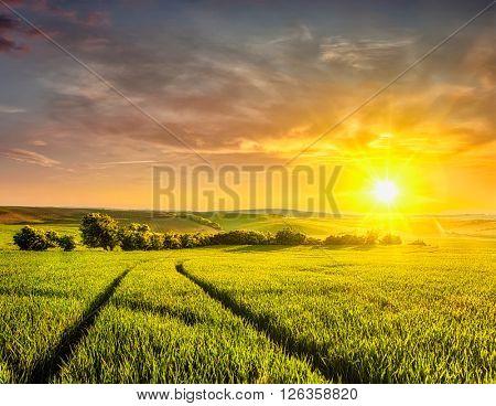 Beuatiful sunset in fields of Moravia, Czech Republic