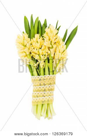 Bouquet Of Yellow Hyacinths Decorated With Lace. Isolated Over White Background