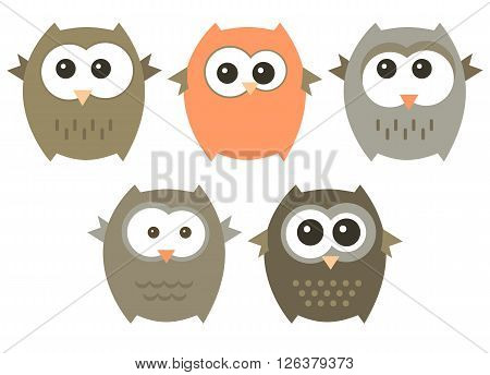 Vector set of cute owls isolated on a white.
