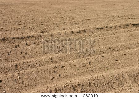 Close View Of Ploughed Furrows In Field