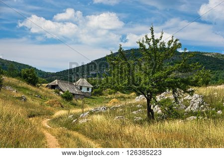 Small path through Pester countryside landscape in southwest Serbia