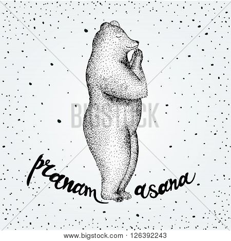 Vector illustration of fun a bear isolated on vintage background. Print posture of morning practice pranayama asana pose yoga. Eps 10. spirit graphic character. Pranamasana poster