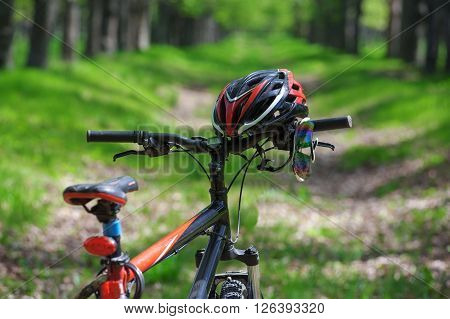 Wheel Mountain Bike, Helmet And Sunglasses On A Trail In The Forest