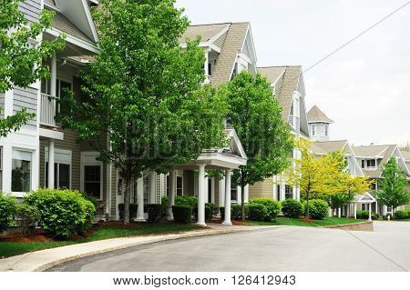 apartment building with spring trees landscape for design