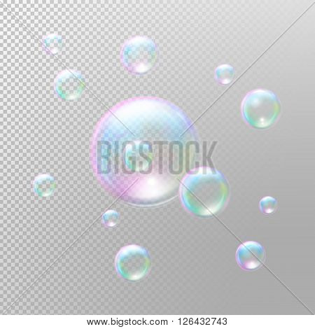 Soap bubbles. Transparent soap bubbles. Realistic soap bubbles. Rainbow reflection soap bubbles. Isolated vector illustration