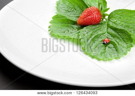 Red strawberry with leaves on the white plate