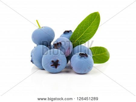 blueberry or bilberry or blackberry or blue whortleberry or huckleberry isolated on white background