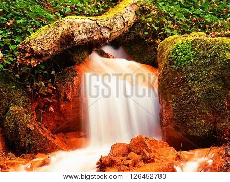 Cascades In Rapid Stream Of Mineral Water. Red Ferric Sediments On Big Boulders Between Green Ferns