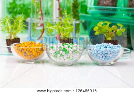 Different Mineral fertilizers in a chemical glass cup on the white background