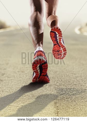 rear view close up strong athletic female legs and running shoes of sport woman jogging on asphalt road fitness healthy lifestyle high performance and endurance concept advertising style