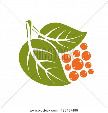 Two Spring Leaves With Orange Seeds Simple Vector Icon, Nature And Gardening Theme Illustration. Sty