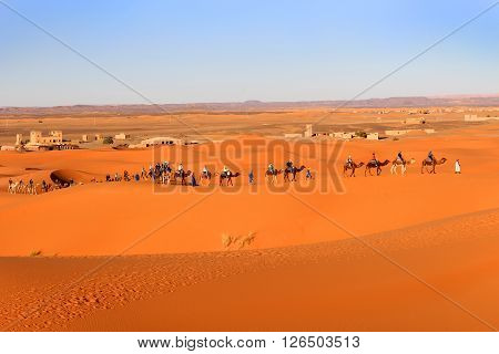 ERG CHEGGI MOROCCO - FEBRUARY 28 2016: People riding on a caravan of camels towards the dunes of the Sahara Desert at Erg Cheggi Morocco at sunset
