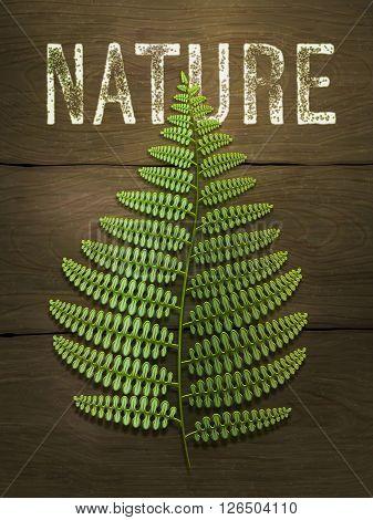 Green fern leaf on wooden background. Realistic vector illustration.