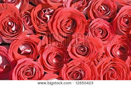 big bunch of multiple red roses of a bride on a wedding from top, from above. kind of texture backg