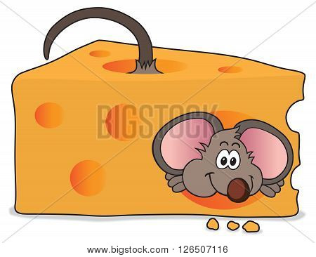 Happy mouse has just made his way through a slice of cheese
