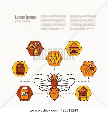 Beekeeping product concept. Beekeeping vector symbols. Bee, honey, bee house, honeycomb, apiary, beehive, flower. Outline style beekeeping concept. Beekeeping product concept illustration