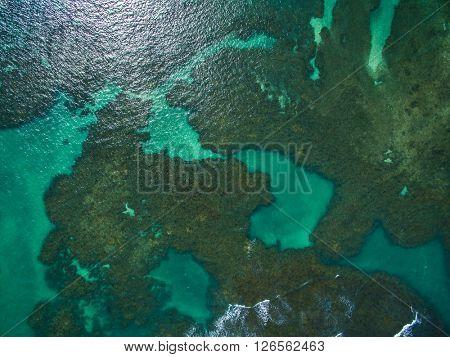 Top view of Porto de Galinhas beach located in Pernambuco State, Brazil