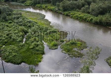 beautiful summer landscape on the river summer day